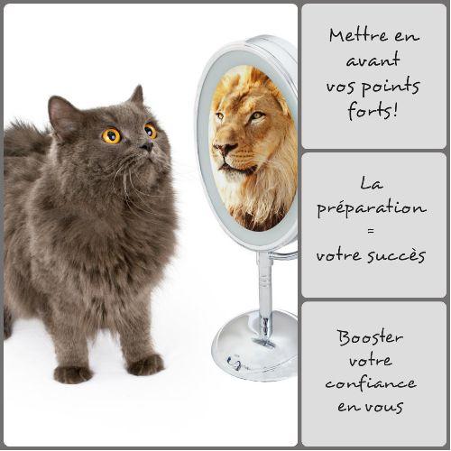 CAT LION AVEC TEXTE2